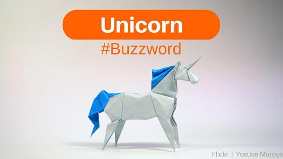 Unicorn Buzzword
